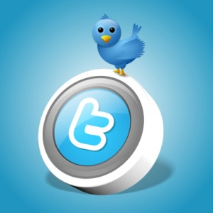 twitter-icone1